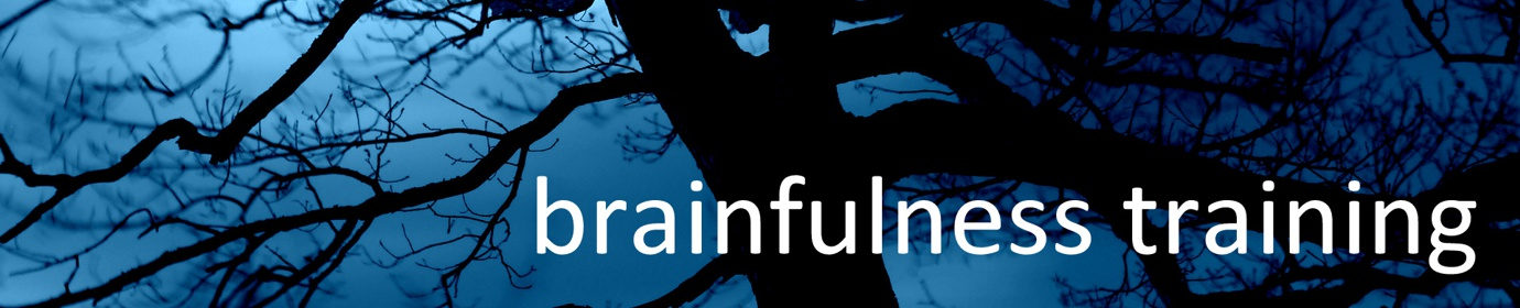 Brainfulness-Training